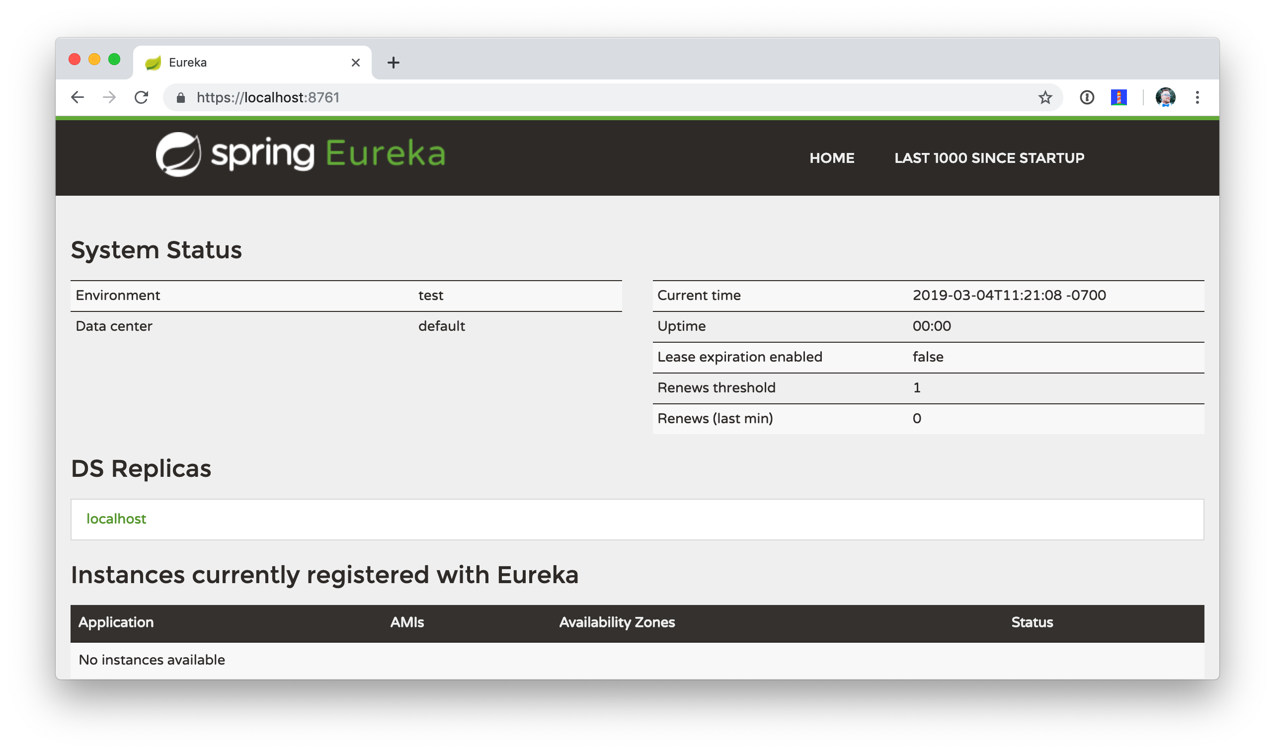 Secure Eureka Server